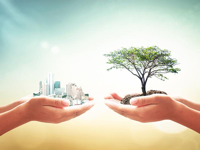 Eco hands
